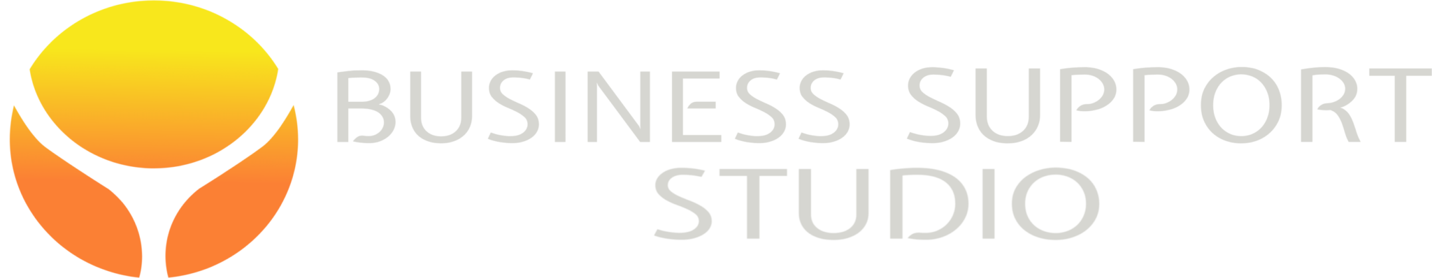 Business Support Studio